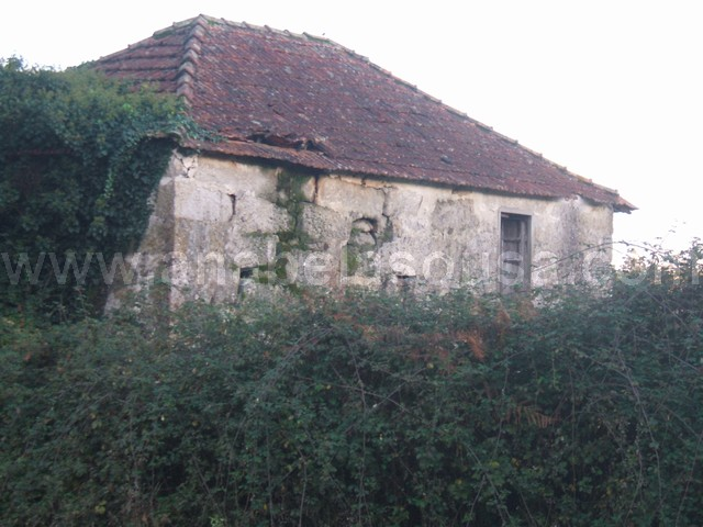 Detached house to restore